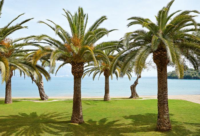 02-daphnila-bay-dasia-luxury-resort-pool-in-corfu