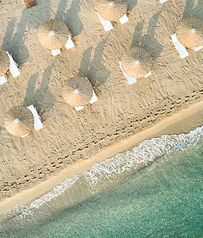 special-summer-splash-daphnila-bay-dassia -